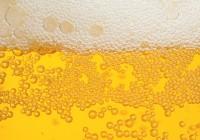 V Klubovniach sa bude variť jedinečné pivo. Ľudia rozhodnú aké!