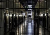 Odhalené podvody za 6 miliónov eur