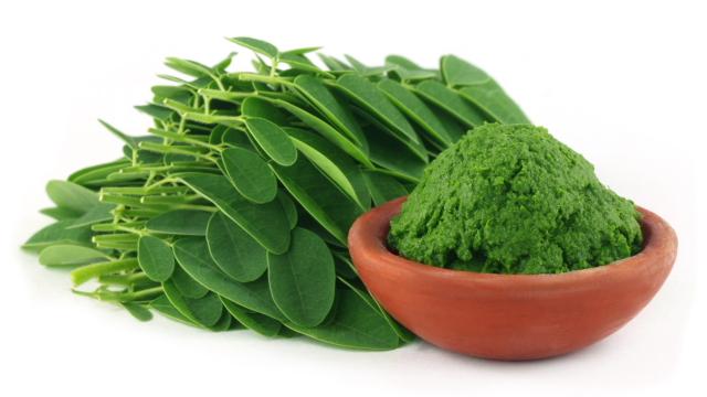 Moringa natural a pomleta+