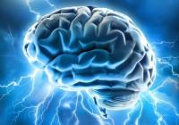 Aj keď mozog nie je sval, potrebuje tréning.