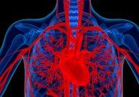 Aneuryzma aorty nie je včas asprávne diagnostikovaná