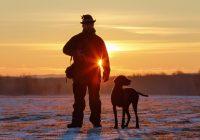 Práca poľovníka je aj v zime veľmi dôležitá